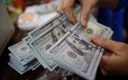 VnDirect: Tiền đồng có thể mạnh lên trong năm 2021