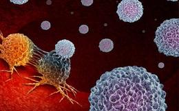 Các nhà khoa học tuyên bố tìm ra cách mới chữa khỏi ung thư, không tác dụng phụ: Từng bị chê là viễn tưởng!