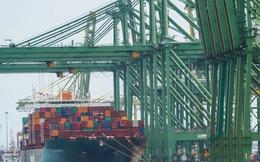 Khủng hoảng thiếu container đang khiến chi phí vận chuyển hàng hóa toàn cầu tăng mạnh như thế nào?