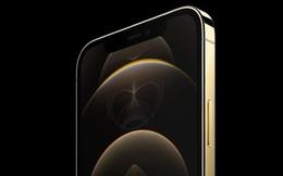 iPhone 13 lộ nguyên mẫu đầu tiên: Thiết kế không đổi so với iPhone 12, ít cải tiến