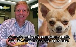 CEO của Taco Bell mất việc vì một chú chó: Cống hiến 3 năm, bị sa thải vì dùng sai 'người' trong chiến dịch marketing