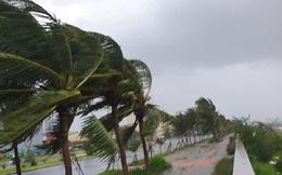 Các địa phương từ Quảng Ninh đến Phú Yên sẵn sàng ứng phó với bão Atsani