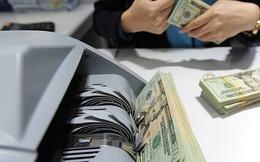 Cung ngoại tệ dồi dào, ngân hàng đồng loạt giảm giá mua USD