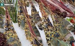 """Mâm hải sản gồm tôm hùm, ghẹ, cua, mực... bán rẻ """"không tưởng"""": Chỉ từ 200.000 đồng"""