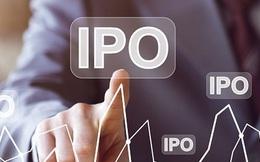 """Làn sóng IPO quá """"nóng"""" làm bùng lên mối lo ngại về bong bóng dotcom"""