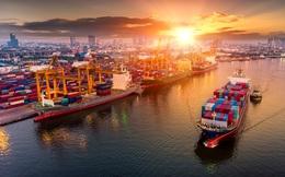 Việt Nam đứng trước cơ hội khởi sắc sau một năm đầy biến động