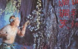 """Bạch Cốt Tinh và Tôn Ngộ Không """"ở chung nhà"""" trong Tây Du Ký 1986?"""