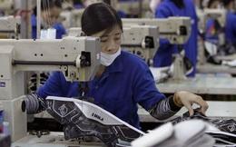 Việt Nam tụt 9 bậc trên bảng xếp hạng thị trường lao động toàn cầu