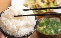 Bác sĩ dinh dưỡng: 4 sai lầm khi nấu và ăn cơm của người Việt khiến cơm mất chất, tăng nguy cơ mắc bệnh
