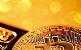 Giá Bitcoin tăng vượt 19.000 USD, vàng cao nhất gần 1 tuần khi USD chạm đáy 2 năm rưỡi