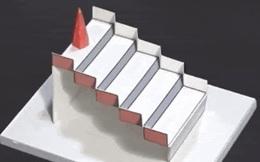 Chiếc cầu thang này là ảo giác ấn tượng nhất năm 2020 do thế giới bình chọn