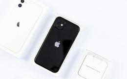 Đây là chiếc iPhone được mua nhiều nhất tại Việt Nam năm 2020