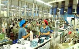 McKinsey: Việt Nam sẽ có 12 hệ sinh thái đa lĩnh vực với doanh thu khoảng 100 tỷ USD vào năm 2025