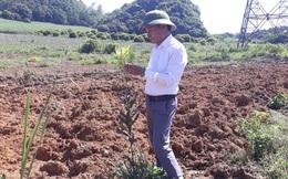 Ám ảnh bóng ma đa cấp thời 4.0: Sự thật vùng nguyên liệu của Macca Nutrition Việt Nam