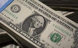 CNN: Đồng USD sẽ mất giá mạnh năm 2021?