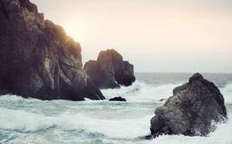 """Nhìn lại một năm đã qua với triết lý Fudoshin giúp người Nhật """"tâm bất biến giữa dòng đời vạn biến"""": Dục tốc bất đạt, có nhẫn nại mới thấy được an yên"""