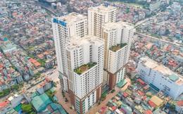 Hòa Phát lập công ty bất động sản quy mô 2.000 tỷ đồng