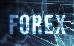 """Cảnh báo """"tránh xa"""" sàn đầu tư tài chính Forex"""