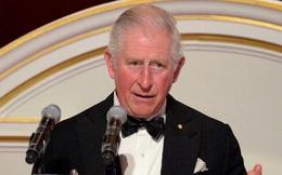 Thái tử Anh Charles dương tính với virus corona mới