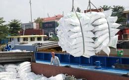 Những doanh nghiệp nào 'trúng' tờ khai xuất khẩu gạo mở lúc nửa đêm?