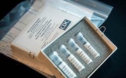 Công ty Mỹ giới thiệu bộ thử kháng thể đối với Covid-19