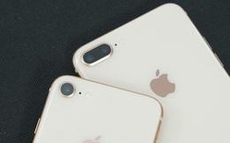iPhone 8 và iPhone 8 Plus chính thức bị Apple khai tử