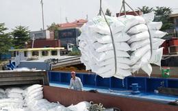 Điểm mặt 24/28 doanh nghiệp 'xù' trúng thầu gạo dự trữ Quốc gia