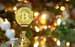 Nhà đầu tư lo Bitcoin sắp sụp đổ