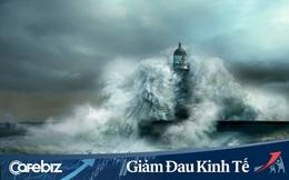 Cơn bão khủng khoảng mang tên Covid-19 đang ập đến: Giới Startup Việt nên làm gì để tồn tại và phát triển?