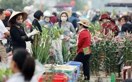 Bốn ca dương tính test nhanh ở chợ hoa Mê Linh không mắc COVID-19