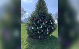 Tự nguyện may khẩu trang treo lên cây tặng mọi người, ai cần cứ đến lấy