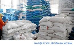 Thanh tra Chính phủ chính thức vào cuộc thanh tra về xuất khẩu gạo