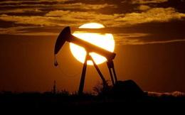 Bloomberg: Chương tiếp theo của khủng hoảng dầu là đóng cửa toàn ngành?