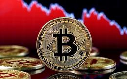 Bitcoin tăng gấp đôi chỉ trong hơn 1 tháng