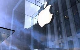 Chiến lược hạ giá sản phẩm kết hợp ra mắt thiết bị giá rẻ giúp Apple sống sót qua mùa dịch