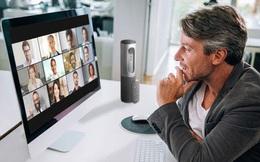 Con trai CCO Google khuyên cha mình dùng Zoom thay vì Google Meet