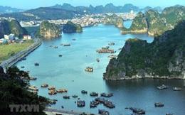 Quảng Ninh: Từ ngày 4/5, vịnh Hạ Long sẽ tổ chức đón khách trở lại