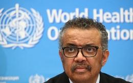 Số chữ ký kêu gọi tổng giám đốc WHO từ chức tăng không ngừng