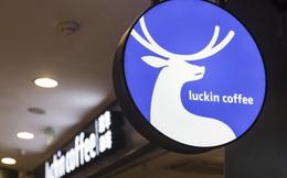 Sau bê bối xào nấu số liệu doanh thu chấn động, chủ tịch 'Starbucks Trung Quốc' vỡ nợ