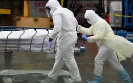 Chuyên gia dịch tễ hàng đầu Mỹ: Đại dịch sẽ không dừng lại đến khi lây nhiễm 60-70% dân số Mỹ