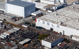 Chưa được mở cửa nhà máy trở lại, Elon Musk tức giận kiện chính quyền địa phương ra tòa và dọa chuyển nhà máy Tesla sang nơi khác