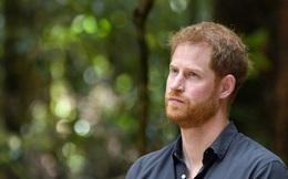 Harry ở Mỹ: Tinh thần ngày một tồi tệ, cuộc sống lạc lối khi rơi vào tình cảnh thất nghiệp