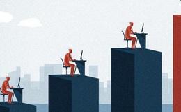 3 con chim 3 vận mệnh: 3 kiểu người ở nơi làm việc và 3 cuộc đời khác nhau