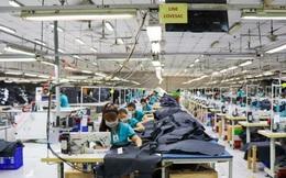 WB: Việt Nam cần cải cách quyết liệt để hưởng được đủ lợi ích từ hiệp định thương mại với châu Âu