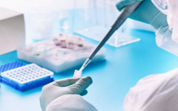 Tiến hành thử nghiệm đợt 2 vắc xin COVID-19 trên chuột