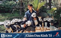 """Ông chủ nhà hàng Việt trên đất Thái kể chuyện dùng gấu trúc """"tiếp khách"""" lên báo quốc tế"""