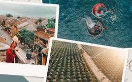Khám phá lịch trình du lịch Việt Nam từ giờ đến cuối năm, các chị em hãy đi ngay để biết nước mình đẹp thế nào!