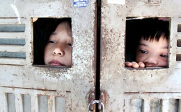 Những đứa trẻ quanh năm sau song sắt, chẳng được khai sinh và ước mơ của 4 bà cháu giữa lòng Thủ đô
