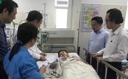 Vụ cây đổ đè học sinh tại TPHCM đang điều tra nguyên nhân vụ việc