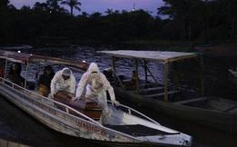 Covid-19: Những cái chết mù mờ ở trái tim của Amazon